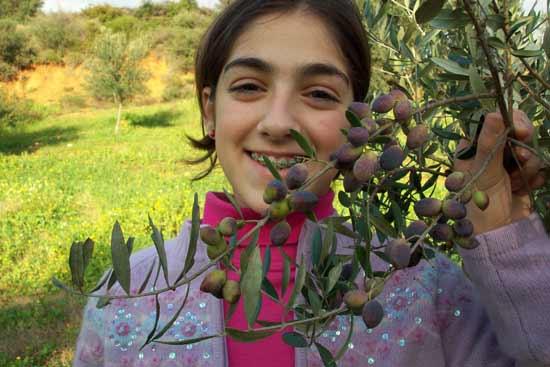 Olive girl (Vasoula)